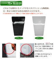 【送料無料】ユッカ145cm[WS11-6146]【観葉植物造花CT触媒/光触媒フェイクグリーン】[W-S]