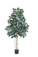 180cmラバーツリー(ナチュラルトランク)