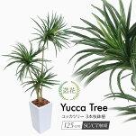 ユッカツリー3本枝125cm鉢植フェイクグリーンインテリアおしゃれCT触媒お祝い