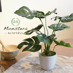 フェイクグリーン観葉植物造花ミニ人工観葉植物光触媒モンステラテーブルポット23cmインテリアおしゃれフェイクグリーンCT触媒消臭抗菌お祝い