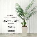 人工観葉植物 170cm アレカパーム 鉢植 TW936-15【フェイ...