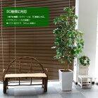 フェイクグリーンカポックシェフレラ(フイリ)180cm(人工観葉植物光触媒対応インテリアリアル)
