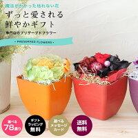 プリザーブドフラワー花鉢