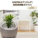 【送料無料】 【リラックス】 Andorea/アンドレア   空気清浄...
