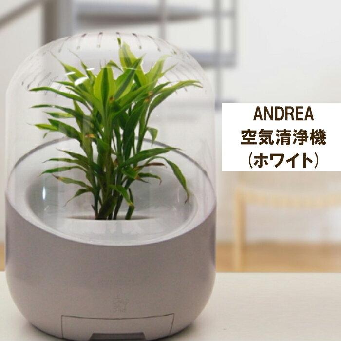 Andorea/アンドレア   空気清浄機 (フィルター交換なし)