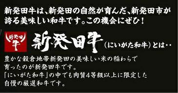 えのちゃんのビーフカレー【中辛】4袋
