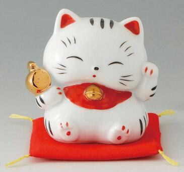 招き猫たまちゃん 福槌(磁器)