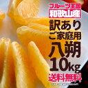 八朔 はっさく 訳あり ご家庭用 10kg 送料無料【予約1...