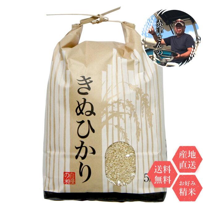 米 和歌山県産 赤津直基さんのキヌヒカリ 10kg 白米から分づきまで美しくおいしい...