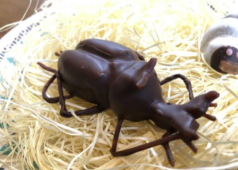 超リアル!かぶと虫の成虫チョコレートおもしろチョコ レート おもしろ お菓子 おかし ユニーク 子供 キッズ 男の子 昆虫 カブトムシ カブト虫 リアル 面白い おもしろい お取り寄せスイーツ サプライズ プレゼント お誕生日プレゼント 贈り物 手土産 ギフト