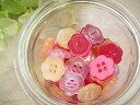 ボタン プラスティックボタン ポリボタン20個セット【手芸】(フルーツゼリー)