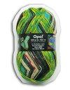 Opal 靴下用毛糸 Hundertwasser 1432