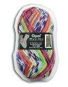 【メール便不可】【人気No.3 】Opal 靴下用毛糸 Hundertwasser 2102