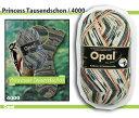 【OPEN特別価格】Opal 靴下用毛糸 Regenwald 6 4000