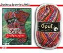 【OPEN特別価格】Opal 靴下用毛糸 Regenwald 6 4001