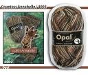 【メール便不可】【OPEN特別価格】Opal 靴下用毛糸 Regenwald 6 4002