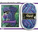【メール便不可】【OPEN特別価格】Opal 靴下用毛糸 Regenwald 6 4005
