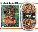 【メール便不可】【OPEN特別価格】Opal 靴下用毛糸 Regenwald 6 4007