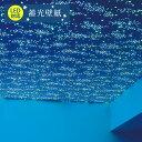 【 壁紙 のり付き 】 壁紙 のりつき クロス 蓄光 星 宇宙 夜空 防かび サンゲツ FE-1375