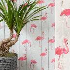 フラミンゴの壁紙 はってはがせる 輸入 壁紙 ドイツ製 ラッシュ b.b.home 1ロール(53cm×10m)単位で販売 フリース壁紙(不織布)