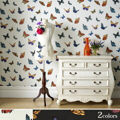 FABULOUSby Graham&Brown(Britain)JMD FlutterByImported Wallpaper【朝ズバッ! 9月12日に紹介...