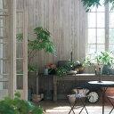 のりなし 国産壁紙 (クロス)/白い木目 白系の木目 ホワイト・グレーウッド SLW-2731