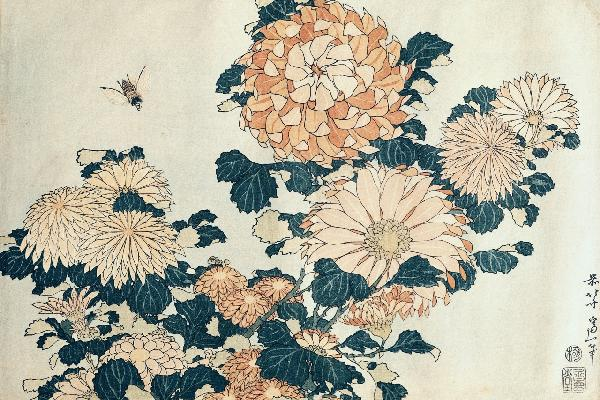 アート 絵画 自然の壁紙 葛飾北斎 菊に虻 輸入 カスタム壁紙 PHOTOWALL / Hokusai, Katsushika - Chrysanthemums (e10382) 貼ってはがせるフリース壁紙(不織布) 【海外取り寄せのため1カ月程度でお届け】 【代引き不可】の写真