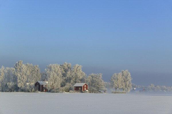 風景 景色 自然の壁紙冬 スウェーデン 雪原輸入 カスタム壁紙 PHOTOWALL / Cottage in the Swedish Winter Landscape (e40482)貼ってはがせるフリース壁紙(不織布)【海外取り寄せのため1カ月程度でお届け】【代引き不可】