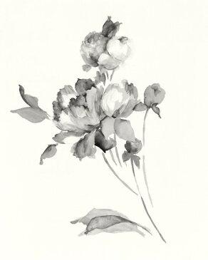 【最大5000円引クーポン配布中!2/16(日)1:59まで】ピオニー シャクヤク 花 アート モノトーンの壁紙 輸入 カスタム壁紙 PHOTOWALL / Peony Blossoms Gray (e312279) 貼ってはがせるフリース壁紙(不織布) 【海外取り寄せのため1カ月程度でお届け】 【代引き不可】