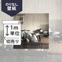 壁紙 クロス国産壁紙(のりなしタイプ)/サンゲツ RE-2633(販売単位1m)