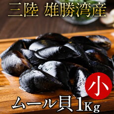 生ムール貝小1kg三陸宮城県産漁師直送活ムール貝