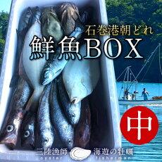 鮮魚BOX中宮城県石巻港産漁師の朝どれ新鮮魚ボックス料理屋ご用達