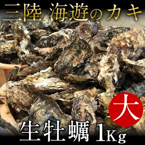 生牡蠣 殻付き 1kg 大 生食用...