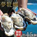 生牡蠣 殻付き 特大 夢牡蠣 15個【送料無料】生食用 生ガ...