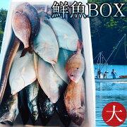 鮮魚BOX大宮城県石巻港産漁師の朝どれ新鮮魚ボックス料理屋ご用達