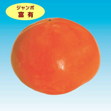 【カキノキ属】(甘柿)ジャンボ富有柿(接木苗)4号LLポット
