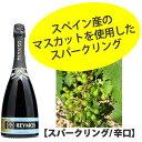 レイモス ブリュット (辛口)750ml スペイン産 スパークリングワイン
