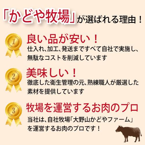 国産牛ミンチ500g【パラパラ】【バーベキュー】【BBQ】【ひき肉】【挽肉】【挽き肉】【かどや牧場】10P01Oct16