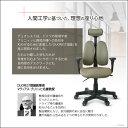 デザインチェア 人間工学チェア デュオレスト DUOREST デザインオフィスチェア DR-7501SP オフィスチェア 腰痛対策 ヘッドレスト付き ロッキングチェア アームレスト キャスター ガス圧 昇降 チェア イス オフィス いす 椅子 dw-dr-7501sp 2