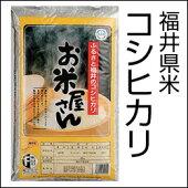 福井県米コシヒカリ5kg箱なし