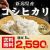 当農園人気NO.1★新潟県産コシヒカリ白米5kg★平成28年度