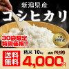 当農園人気NO.1★新潟県産コシヒカリ白米10kg★平成28年度