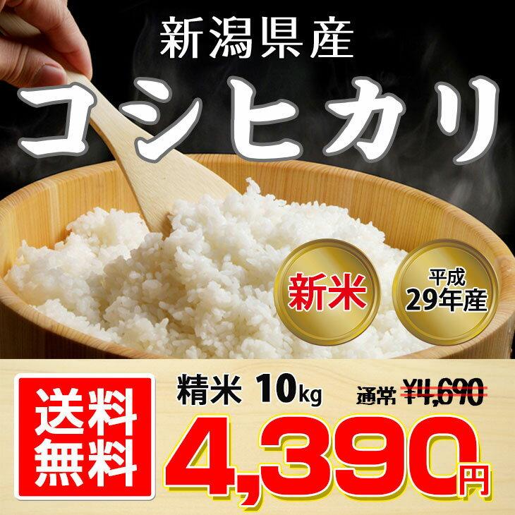 【予約受付中】【送料無料】平成29年 新潟県産 コシヒカリ 10kg【お中元 お歳暮に大人気♪】