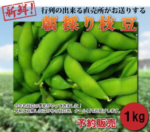 【送料無料】朝採り新鮮!ビールにぴったり新潟枝豆 1kg