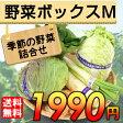 【送料無料】 産地直送 野菜セット Mサイズ 【お歳暮・お中元にもどうぞ!】