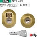 【26-A】BFフォルマ(QDC17-QDC18-QDC19)トステム 玄関 鍵(カギ) 交換 取替え用DNシリンダー 二個同一...