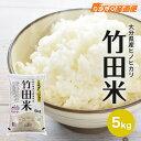 令和元年度産 ひのひかり 竹田米 5kg お米 単一原料米 九州 大分県産 ヒノヒカリ