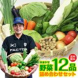 【送料無料】レビュー4.6以上 九州 鹿児島 野菜セット 詰め合わせ12品