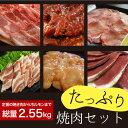 【焼肉セット】【BBQ】【あす楽対応】