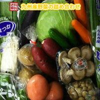 九州・鹿児島産野菜詰め合わせ